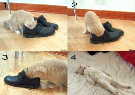 избавиться от запаха новой обуви