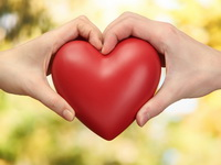 Сколько у человека ударов сердца