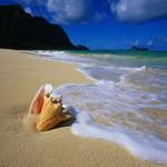 Чем полезно море