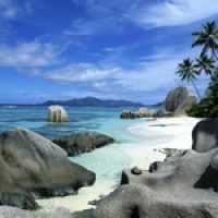 Как выжить на острове