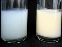 Сколько можно хранить грудное молоко
